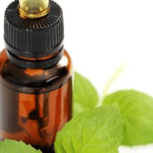 peppermint oils